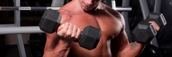 Top Tips for Muscle Building